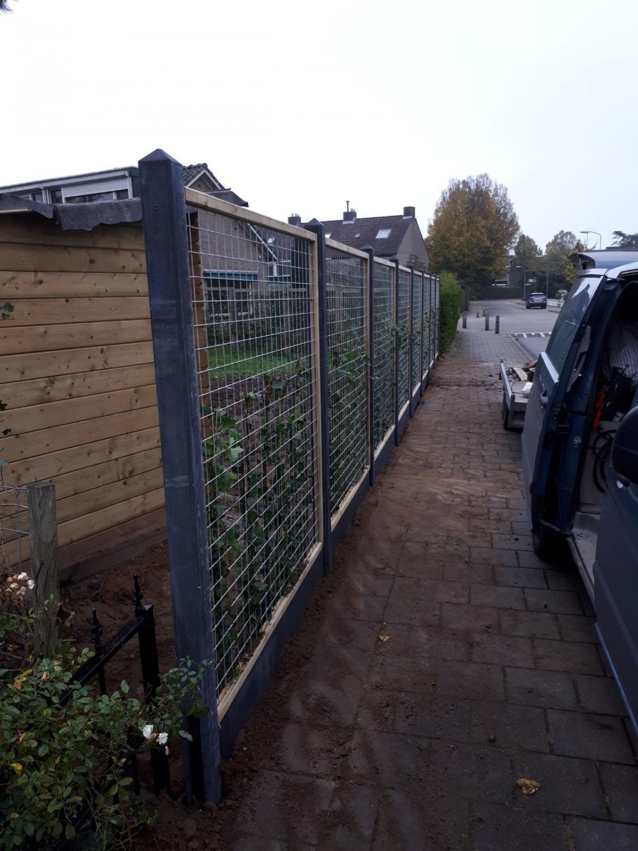 In Velp, Gaasschermen en hederas aangeplant i.c.m. antraciet betonsysteem
